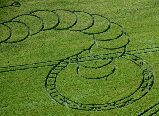 alien-wormhole-crop-circle-at-boreham-woods-near-lockeridge-wiltshire-5th-july-2012-close-up-view-tail-wormhole.jpg