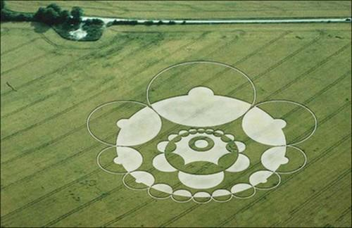 geometrie-issue-des-crop-circles-geometrie20.jpg