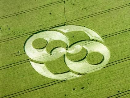 great-shape-of-crop-circle-422-24734.jpg