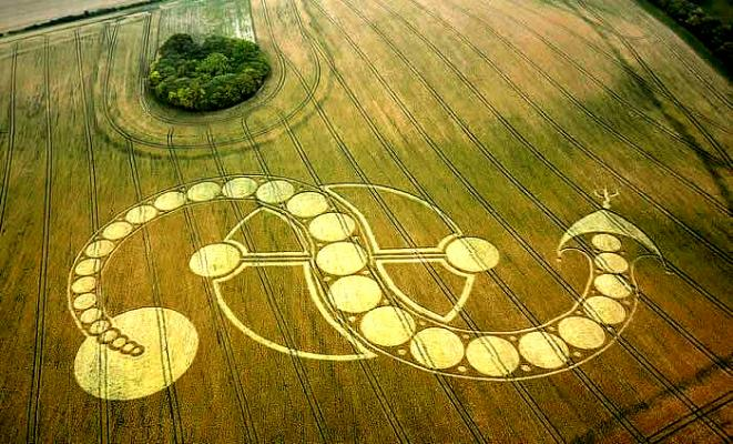 inverted-s-crop-circle-west-woodhay-down-wiltshire-29th-july-2011-2.jpg