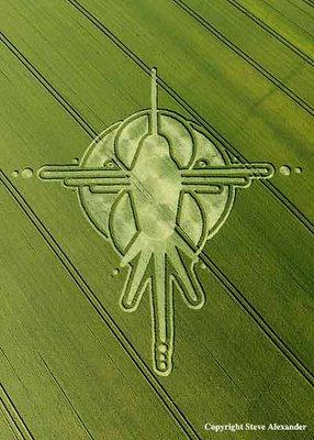 the-humming-bird-nazca-lines-peru-crop-circle-reported-july-the-2nd-at-milk-hill-near-stanton-st-bernard-wiltshire.jpg